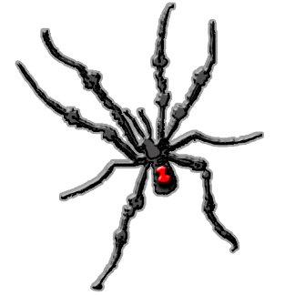 Bugs, Spiders, Creepy Crawlies