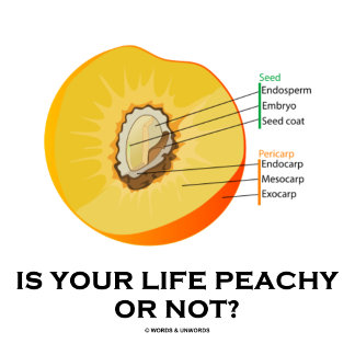 Is Your Life Peachy Or Not? (Food For Thought)