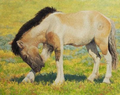 Mongol Horse #3