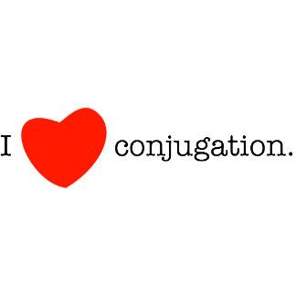 I love conjugation