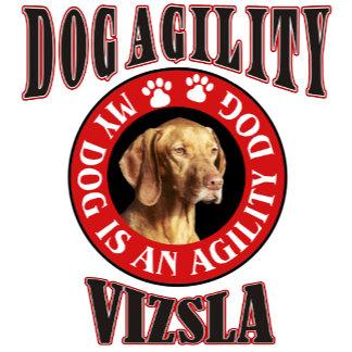 Dog Agility-Top Breeds