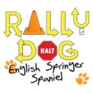 English Springer Spaniel Rally Dog