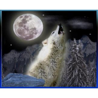 Wolf at Night 2