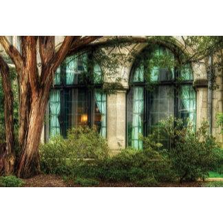 Castle - The Castle Windows