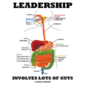 Just Guts (Digestive System Anatomical Humor)