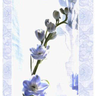 """blue delphinuim w/pattern poster print"""