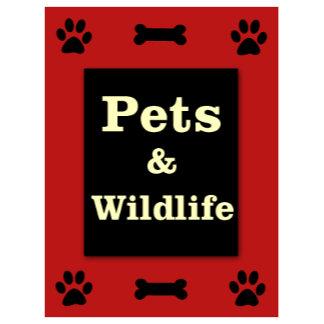 Pets / Wildlife