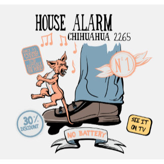 Chihuahua Security Alarm ~ Funny New Invention
