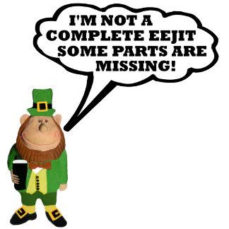 Funny eejit Irish T shirts for eejits