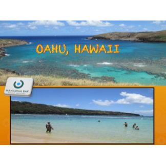 HAWAII COLLAGE #13