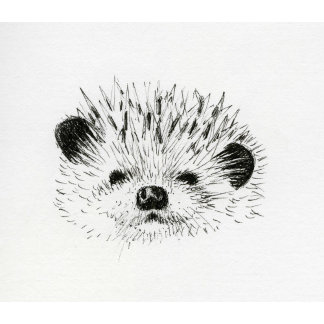 Animals-Domestic + Wild
