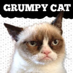 Official Grumpy Cat Merchandise on Zazzle