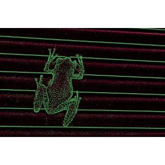 green purple frog graphic amphibian reptile design