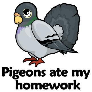 Pigeons ate my homework
