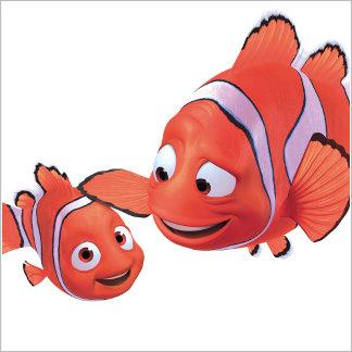 Nemo & Marlin