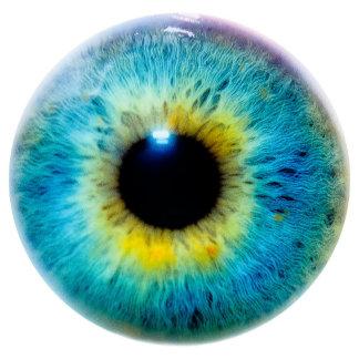 Eye I Gifts