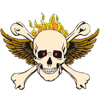 Skull wings fire