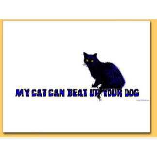 Cat Beat Up Dog