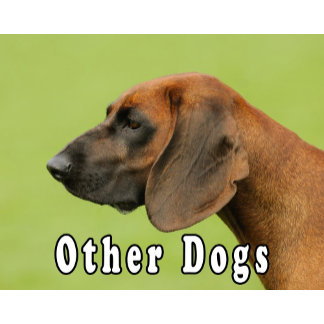 _2_ Other dogs