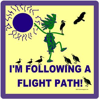 Bird Flight Path