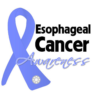 Esophageal Cancer Awareness Ribbon