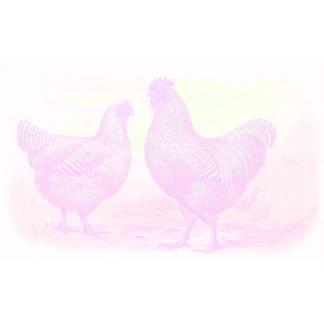5 - PinkFoam