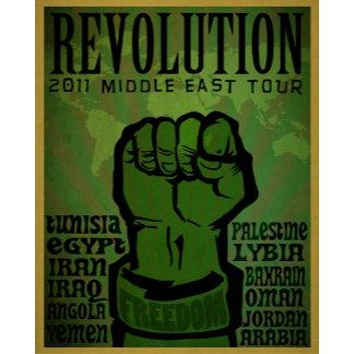 Arab Spring Revolution
