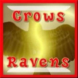 Crows/Ravens