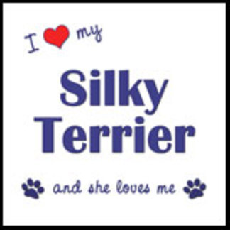 I Love My Silky Terrier (Female Dog)
