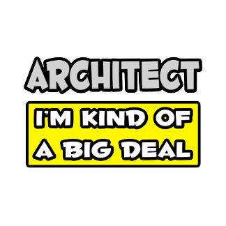 Architect .. I'm Kind of a Big Deal