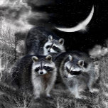NightBanditsMAG.png