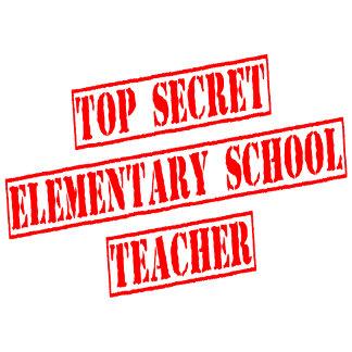 Top Secret Elementary School Teacher