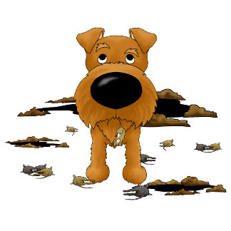 Irish Terrier - I Hunt...Therefore I Am...