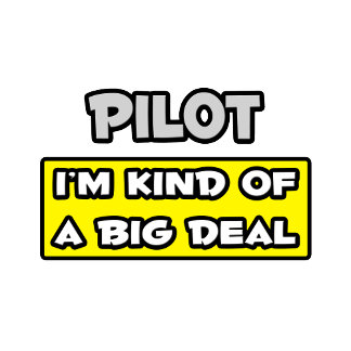 Pilot .. I'm Kind of a Big Deal