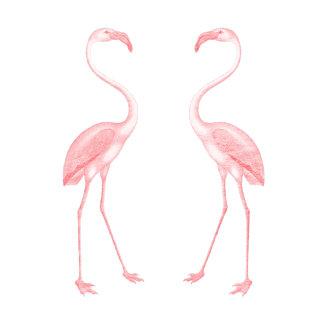 Facing Flamingos