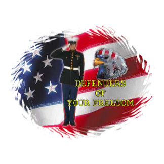 Defenders of freedom *65 items,