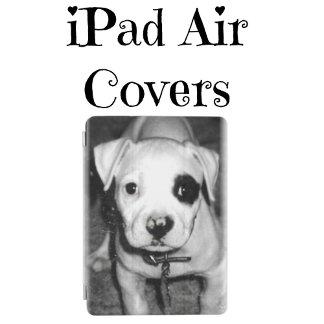 iPad Air Covers