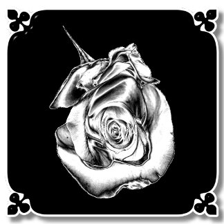 SILVER ROSE BUD