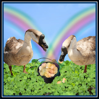 Lucky Geese