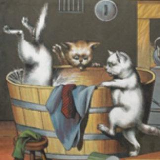 Kitties' Bath