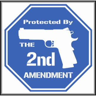 Protected by The Second Amendment ( Blue )