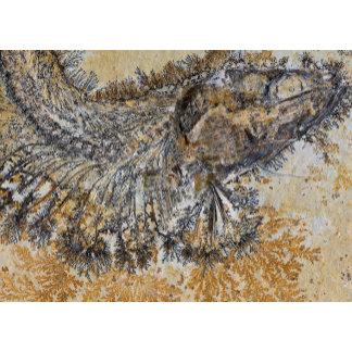 Geology and Palaeontology