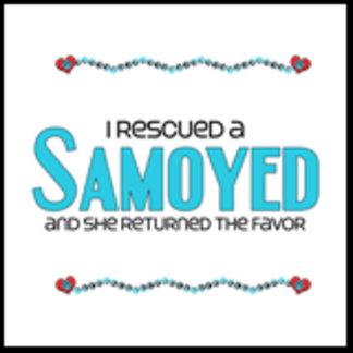 I Rescued a Samoyed (Female Dog)