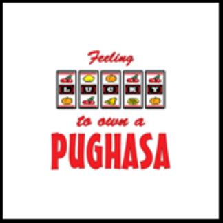 Feeling Lucky to Own a Pughasa