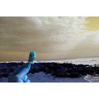 blue hand holding barnacle yellow sky