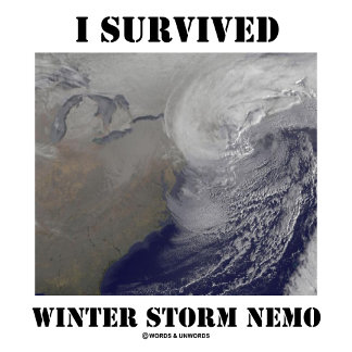 I Survived Winter Storm Nemo (Outer Space)