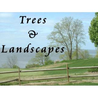 Trees / Landscapes