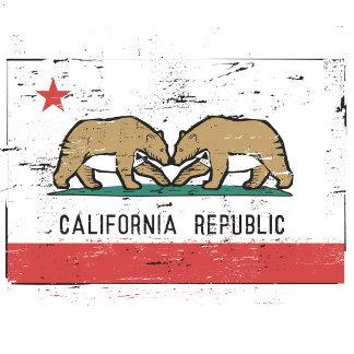 California Gay Marriage Flag