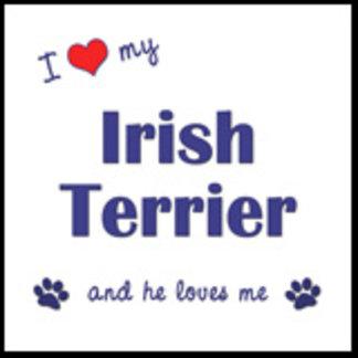 I Love My Irish Terrier (Male Dog)