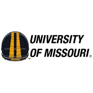 Helmet Top - University of Missouri (Custom)